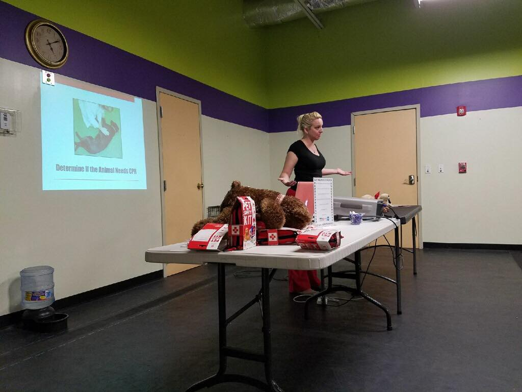 12118 11am 2pm Petcpr And Wilderness First Aid For Dogs