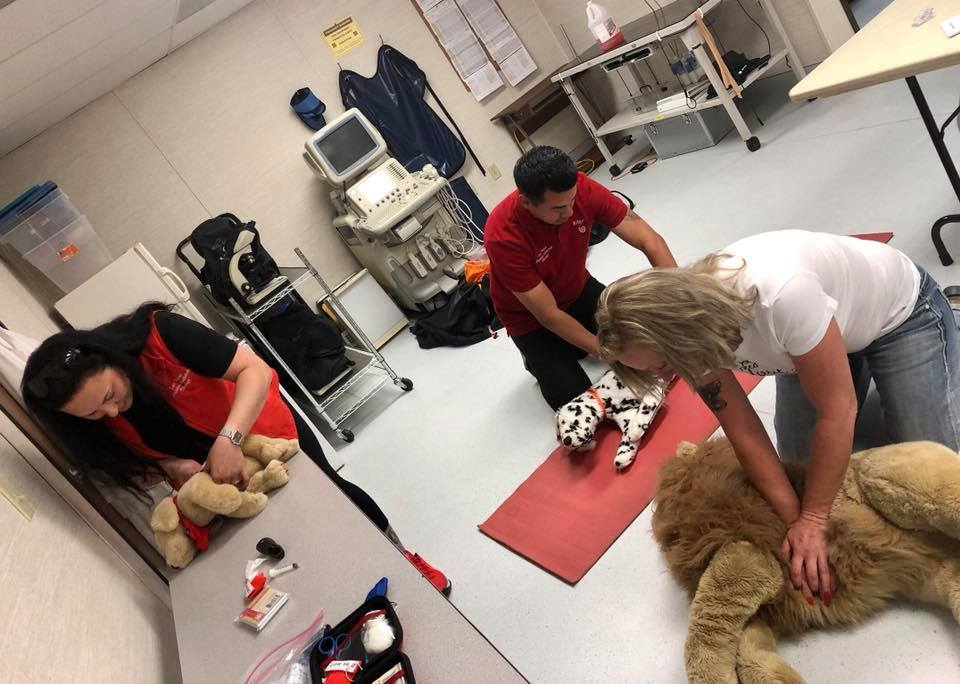 Register For A Class Pet Emergency Education