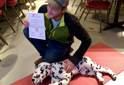 certified Dalmatian