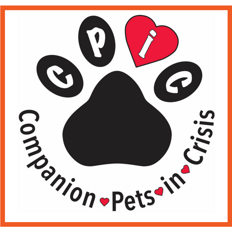 1 18 20 10am 1pm Petcpr Certification Class And Fundraiser For Companion Pets In Crisis Scottsdale Az