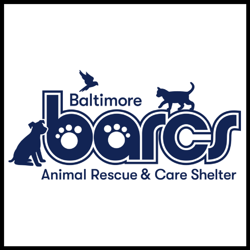 81918 3 6pm Petcpr Certification Class Fundraiser For Barcs