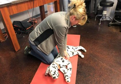 blond pet cpr