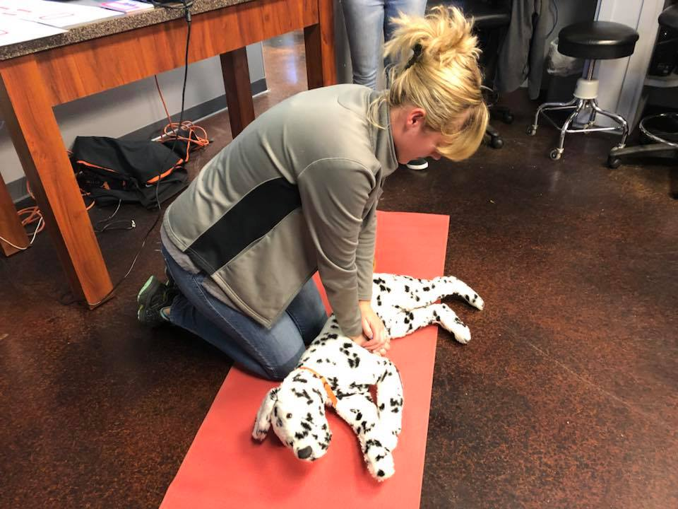 82518 1 4pm Petcpr Certification Class Hosted By Dogma Catma Pet