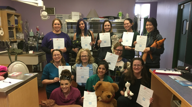 Petcpr Canine And Feline Cpr And First Aid Certification Online