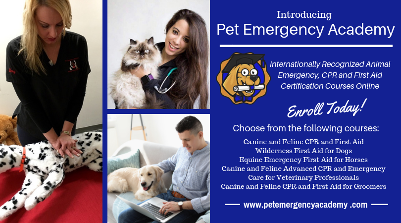 Register for a Class – Pet Emergency Education